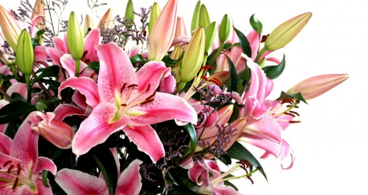 Flower Shops – What Do You Expect And What Are The Benefits!