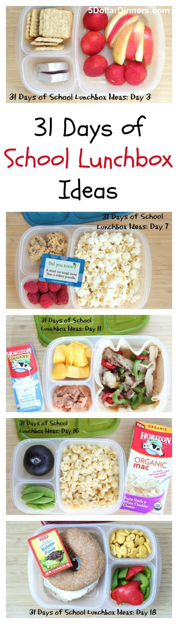 31 days of school lunch IDEAS