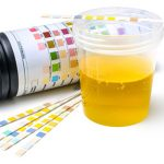 Review Clear Choice Synthetic Urine